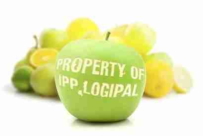 IPP Logipal,rental pallet UK,pool pallet,British pallet rental