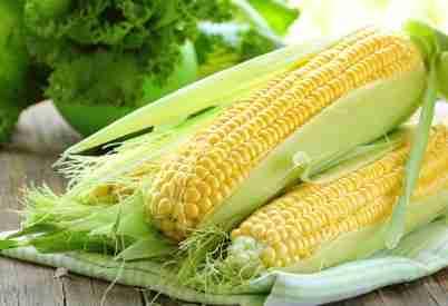 corn with husk