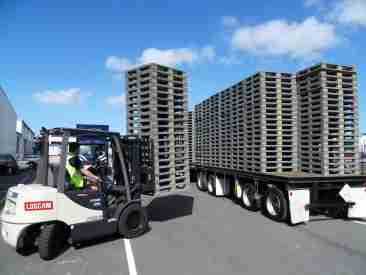 Blue sky outlook for grey block style pallets in NZ.