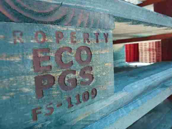 eco PGS