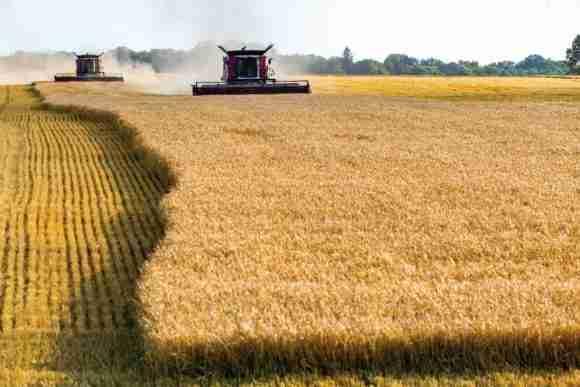 CHEP Solutions Portfolio Wheat Harvester 1024x683 e1485922879938
