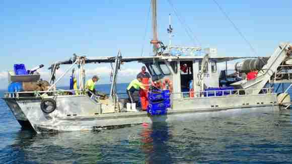 Mussel Deployment e1493913401379