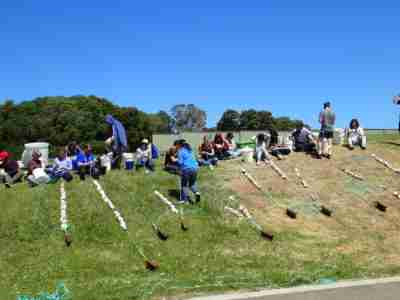 Queenscliff PPB Volunteer Day on the Hill e1493913459628