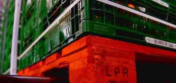 Europool System crates on LPR pallet