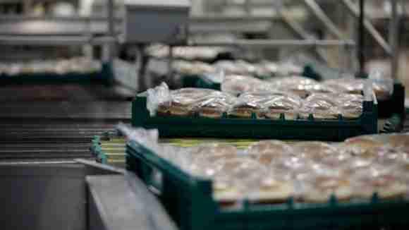ORBIS bakery tray